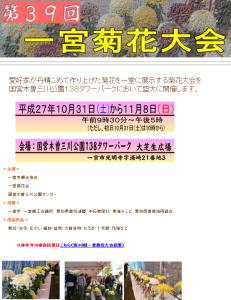 2015一宮菊花大会
